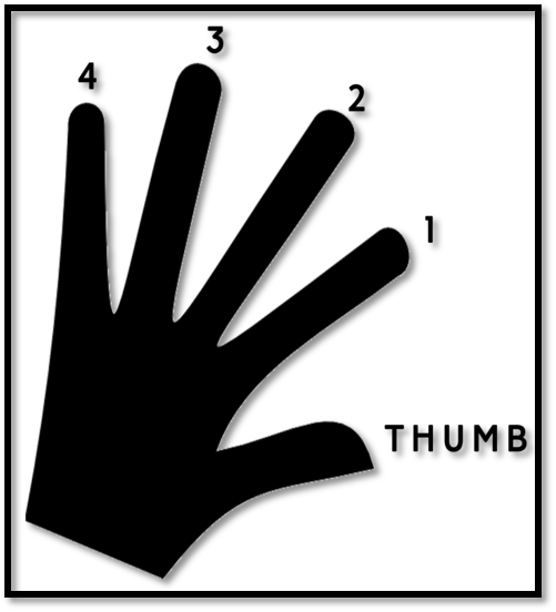 Image 2 - Guitar Finger Numbering Guide - B Chord Guitar